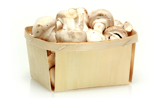 Packing for mushrooms 500gr.