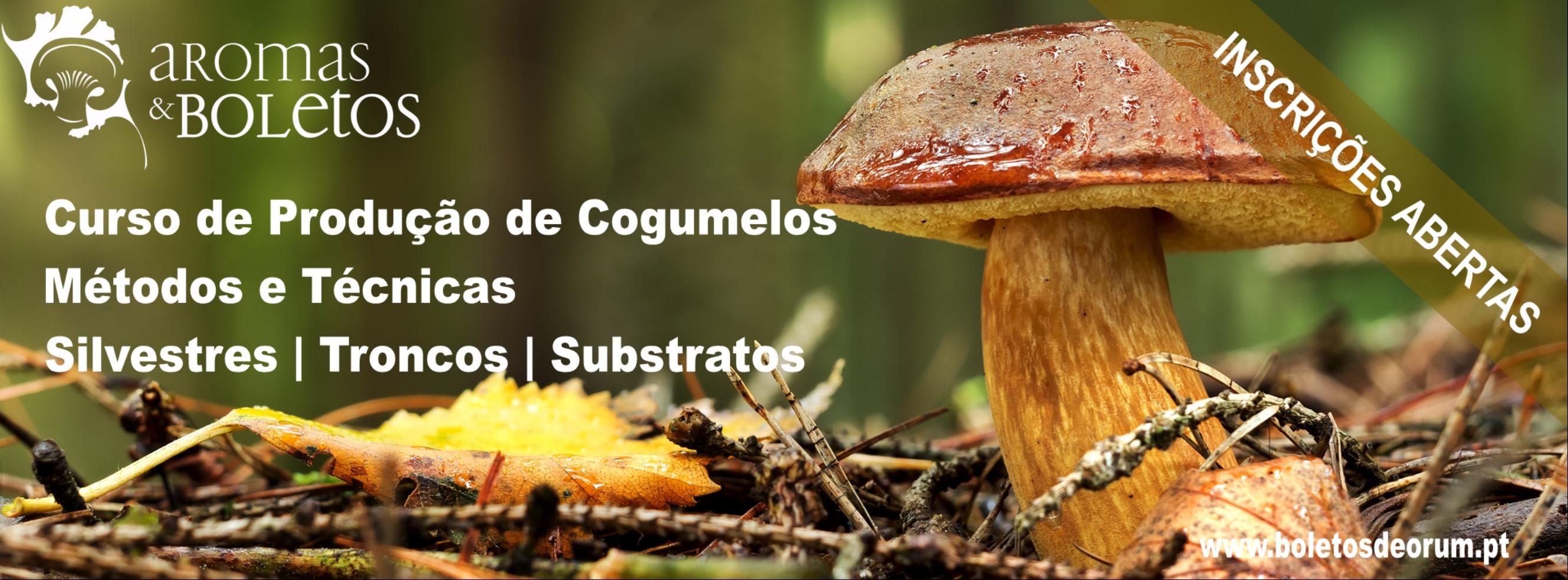 Producao_de_Cogumelos_Metodos_e_Tecnicas